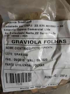 🚚 巴西原產刺果番荔枝茶葉