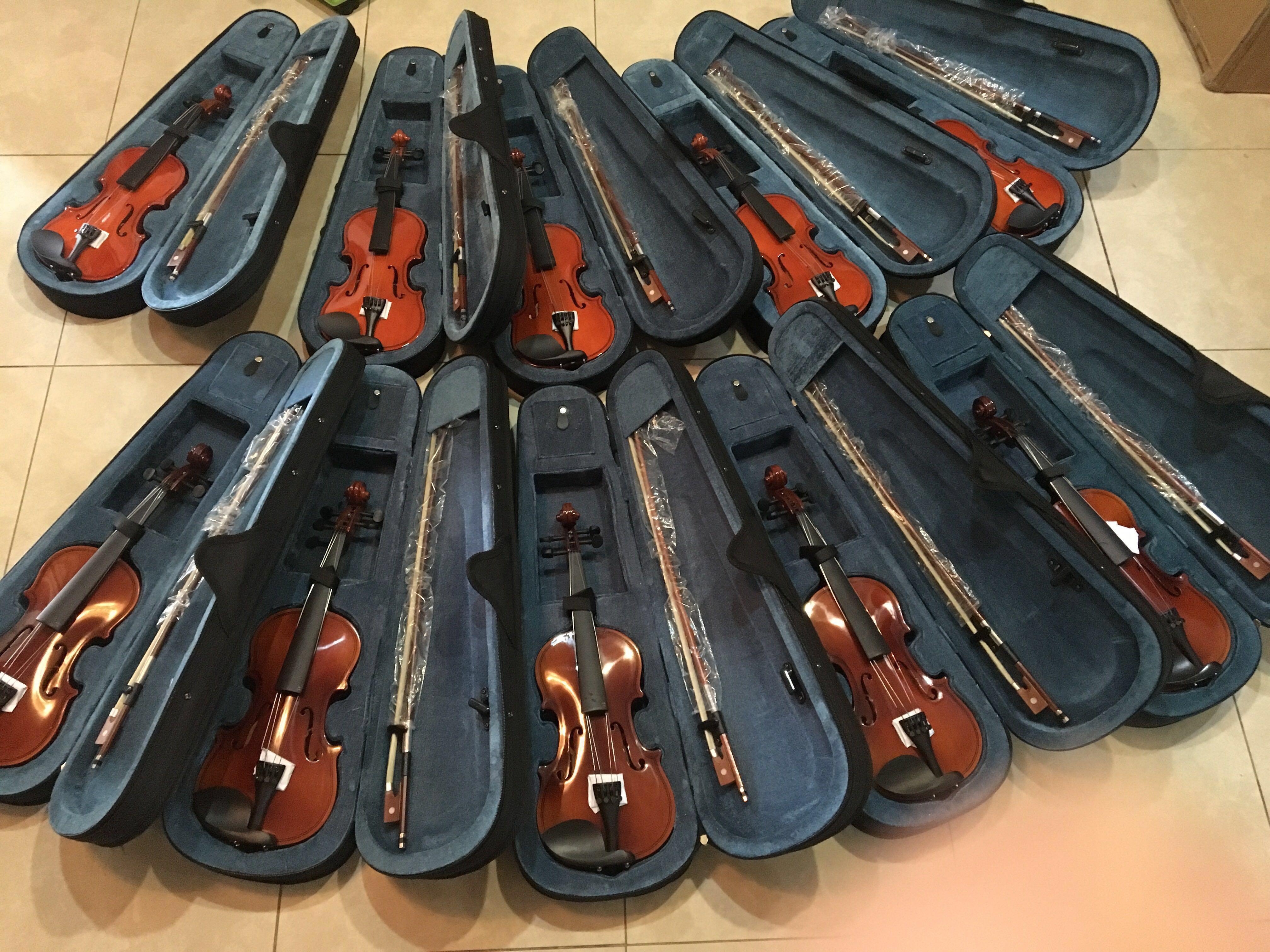 brandnew starter premium violins