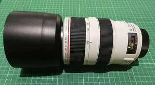 Canon EF 70-300 f4-5.6 L IS USM