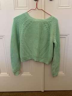 Mint crop knit