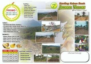 Jual Kavling kebun produktif harga 26 jt luas 100m2 di jonggol
