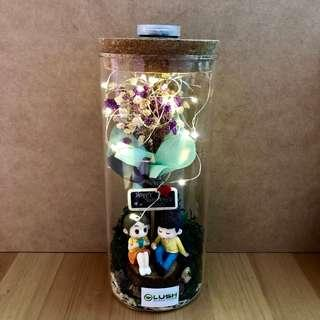 ❤️ LATEST! V Day/ Mother's Day/ Mum's Day/ Anniversary/ Valentine's Day/ Christmas/ Birthday/ Congrats/ Farewell/ House warming- Dried Baby Breath Flower Fairy Light Glass Jar