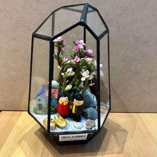 LIMITED EDITION!!  CNY Auspicious Succulent Plant Geometric Terrarium for House decoration