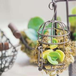 多肉植物 日本和風花器 迷你鳥籠 收納籃擺設 寫字樓辦公室家居擺設開張送禮禮物
