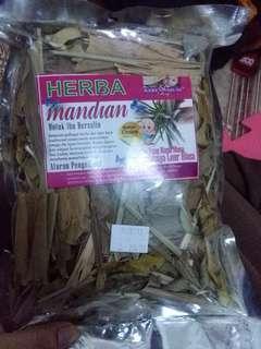 Herba Mandian Pantang