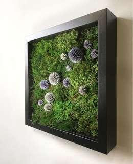 Moss Art Wall ~ REAL Preserved Moss Decor Raindrops