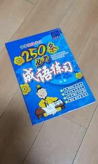 中学高级华文250条必考成语练习 Exercise On Idioms For Secondary Schools (Higher Chinese)