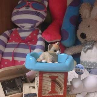 🚚 超萌寵物貓狗 貓咪
