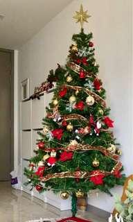 Christmas Tree (without ornaments)
