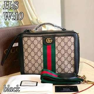 Gucci Vanity Bag with Box