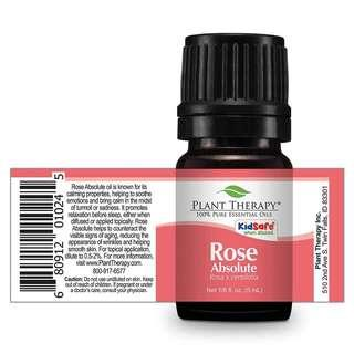 Rose absolute essential oil, plant Therapy IN STOCK