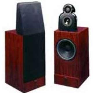 Very Rare ACARIAN SYSTEMS ALON I FLOORSTANDING SPEAKERS