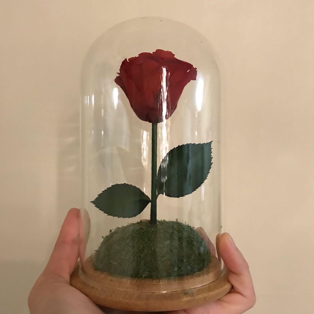 玫瑰花擺設 保鮮花 玻璃罩