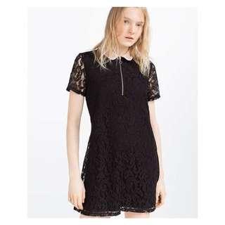 Zara Collared Lace Dress