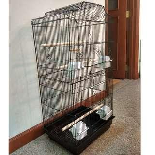 *SOLD OUT* Black Large and Tall Bird Cage
