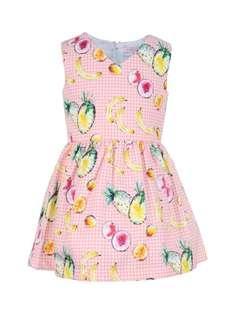 Gingersnaps Fruit Print Dress