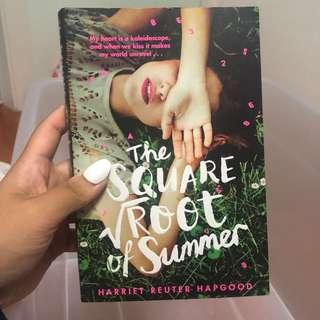 The square root of summer novel