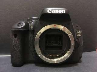 Canon EOS 600D with kit lenses efs 18-55 / efs 55-250