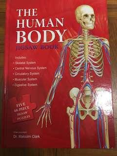 The Human Body Hard cover
