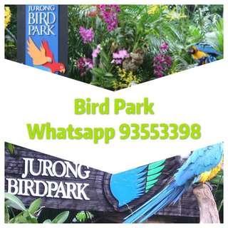 Bird Park               Bird park