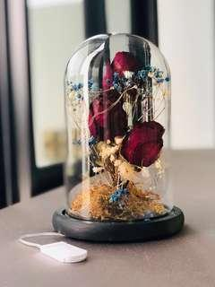 [VDAY] Dried roses in bell jar with fairy lights