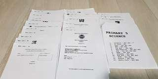 Past year exam P5 science papers