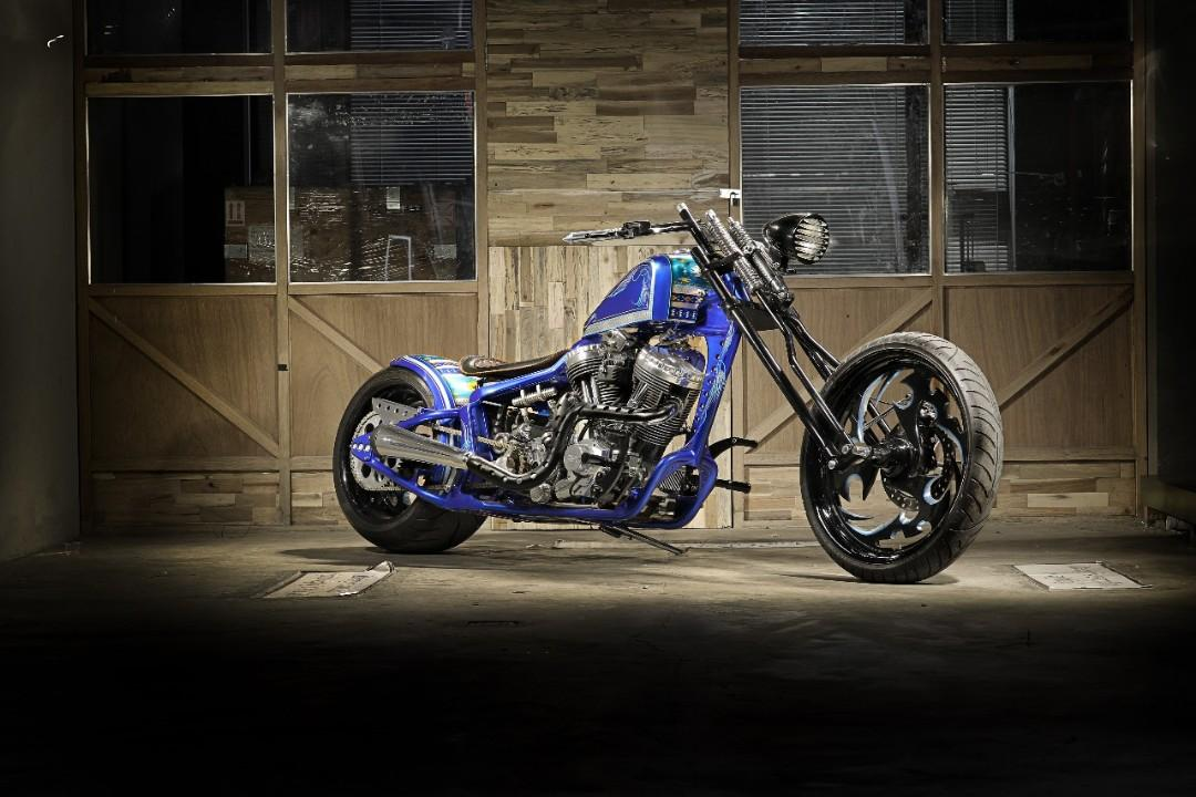 Custom paint - motorcyle / gas tank / parts, Everything Else