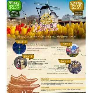 4Days & 3Nights S.KOREA ALL-IN Package/ Depart CEBU (Travel: May & August)