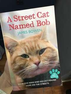 可愛小貓街貓A street cat named Bob勵志書story book motivation