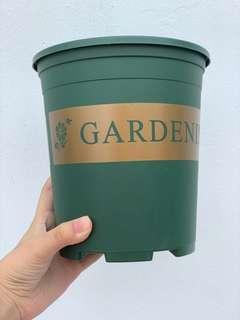 🚚 Decorative Pot