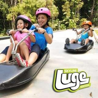 Skyline and Luge [Open Ticket]