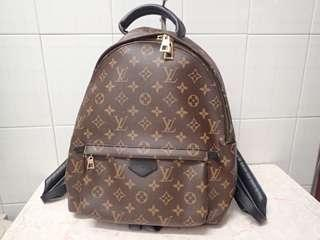 LV Backpack springs palm mm monogram