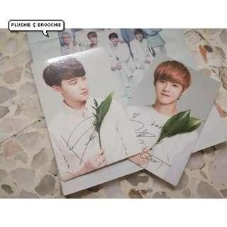 Exo official nature republic photocards ( Luhan / D.O Kyungsoo ) COMBO SET