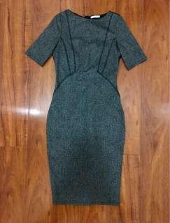 Zara Bodycon Midi Dress