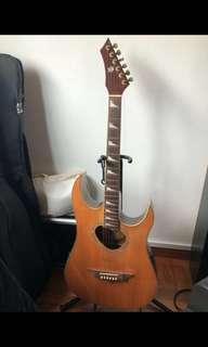 Roberto Vintage Acoustic Guitar