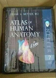 Atlas of Human Anatomy Netter 7th ed