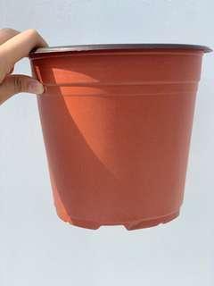 🚚 Flower Pot (big)