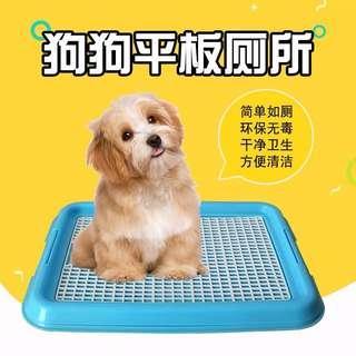 Dog Pee Tray