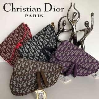 Cristian Dior Saddle Bag