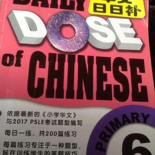 Daily dose of Chinese Primary 6