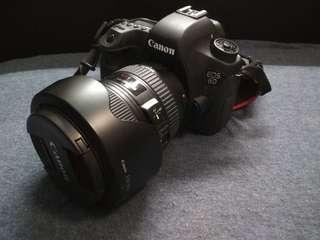 Canon DLS camera