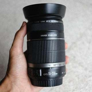 Canon EFS 55-250mm f/4-5.6 IS
