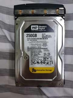 WD 250GB SATA 16MB Enterprise Storage