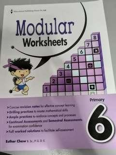 Primary 6 Modular Worksheets
