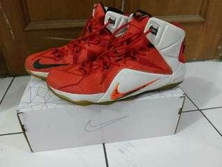 "Lebron 12 ""Lion Heart"" Original"