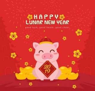 CNY Promotion 2019 (seeds)