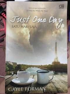 Novel Just One Day by Gayle Forman