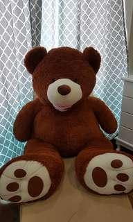 Huge Life Size Teddy Bear