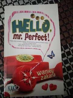 Malay Novel Hello Mr. Perfect ( Kaki Novel)