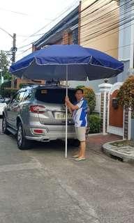 Beach Umbrella (Big)